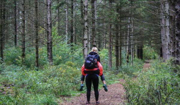 Diventare Naturopata: percorso di vita, professione di aiuto